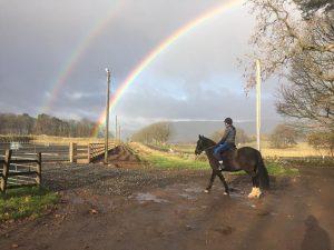John Cameron Cavaletti Clinic @ Easterton Farm Park